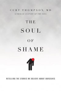 The Soul of Shame: Retelling the Stories We Believe About Ourselves - by Curt Thompson
